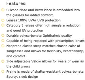 ultimate polarised banz sunglasses - features